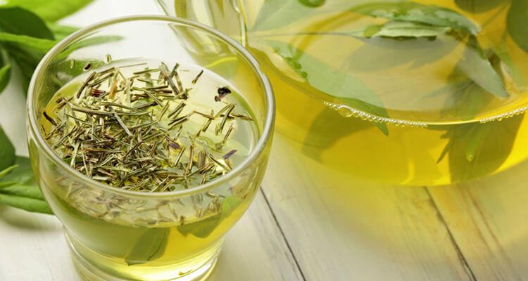 Yeşil Çayın Zayıflama Üzerine Etkisi